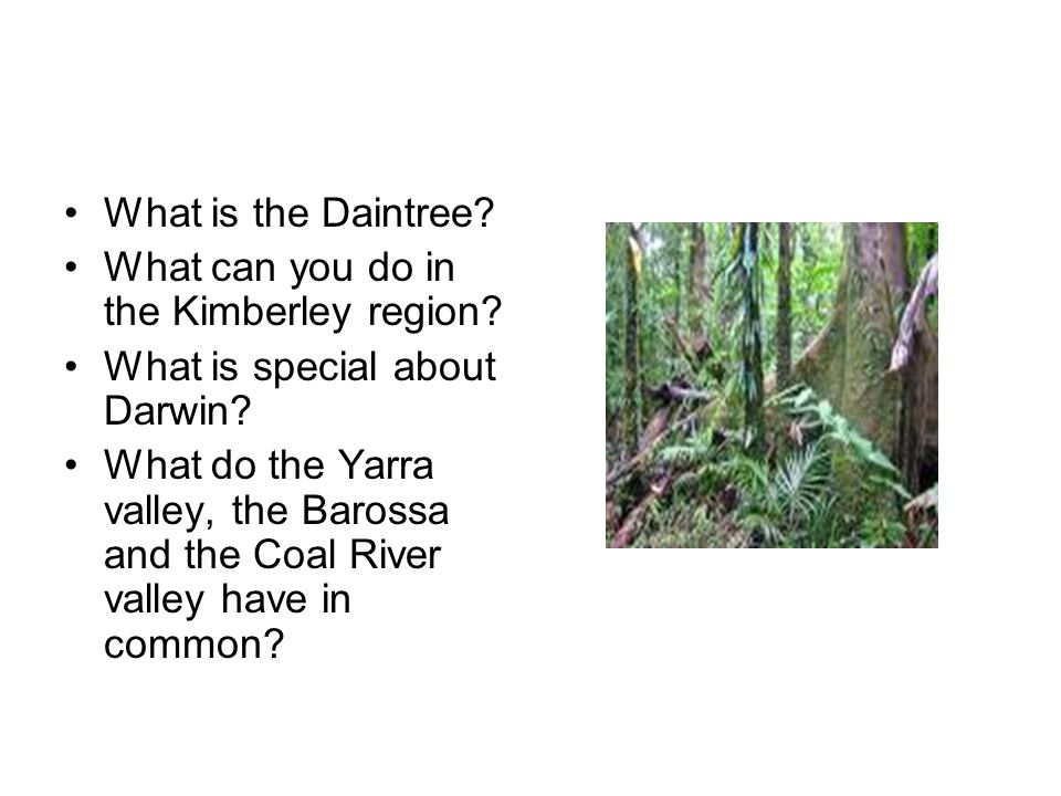 What can you do in the Kimberley region.What is special about Darwin.