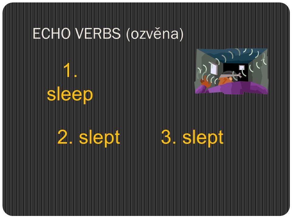 ECHO VERBS (ozvěna) 1. sleep 2. slept 3. slept