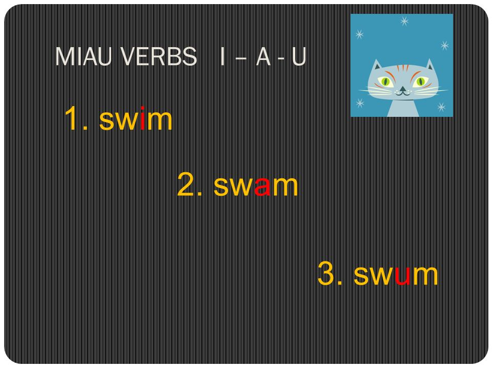 MIAU VERBS I – A - U 1. swim 2. swam 3. swum
