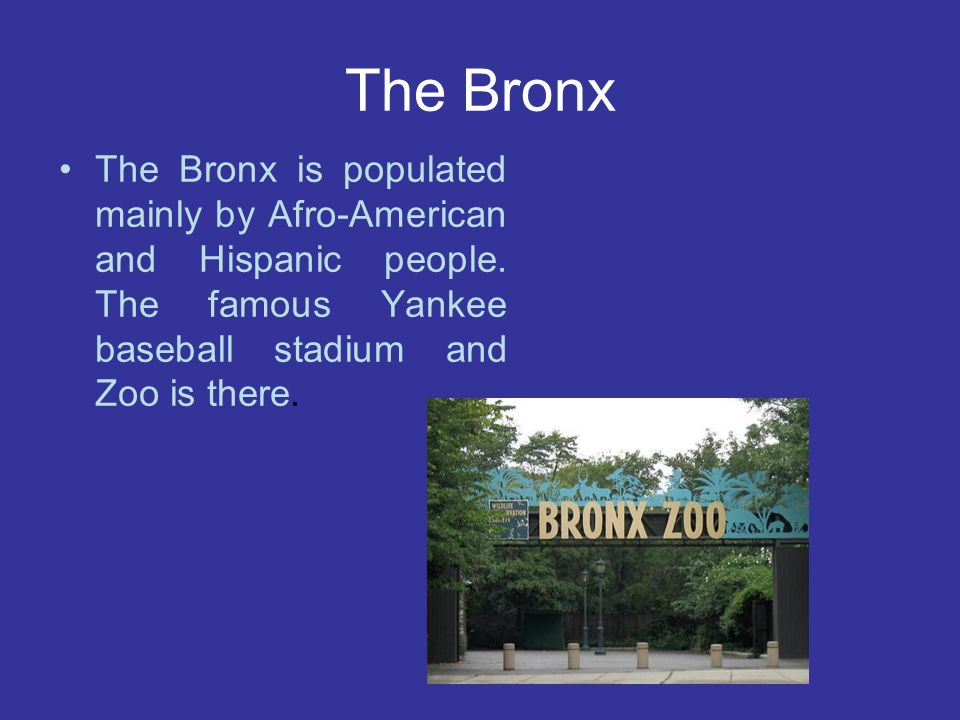The Bronx The Bronx is populated mainly by Afro-American and Hispanic people. The famous Yankee baseball stadium and Zoo is there.