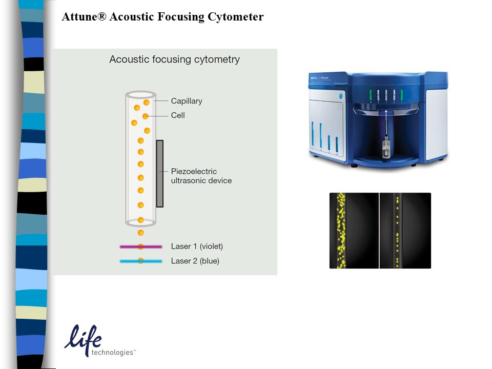 Attune® Acoustic Focusing Cytometer
