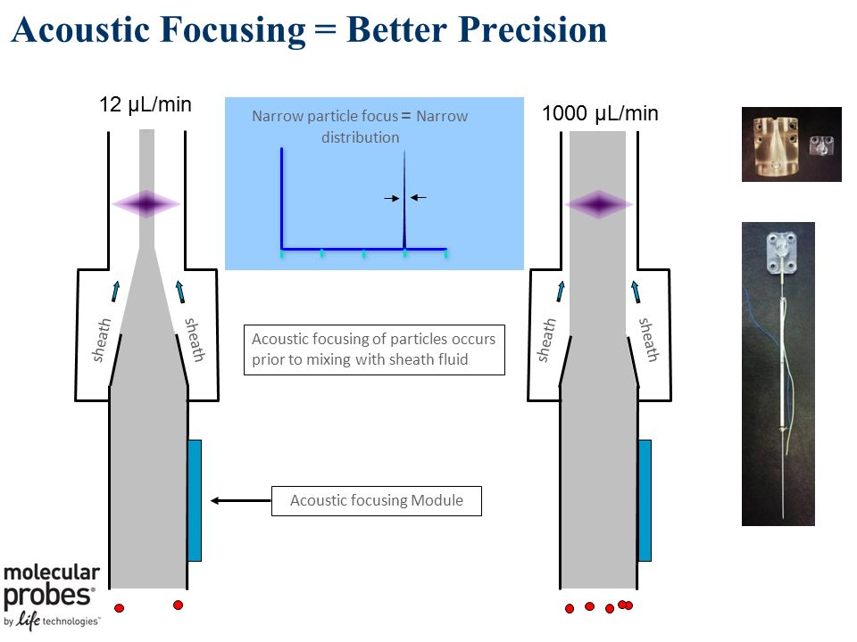 Acoustic Focusing = Better Precision Acoustic focusing Module sheath Narrow particle focus = Narrow distribution 12 µL/min 1000 µL/min Acoustic focusing of particles occurs prior to mixing with sheath fluid