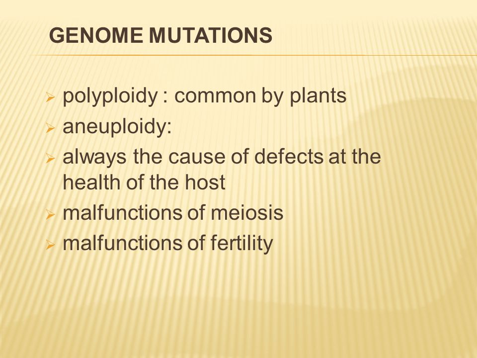  polyploidy : common by plants  aneuploidy:  always the cause of defects at the health of the host  malfunctions of meiosis  malfunctions of fertility GENOME MUTATIONS