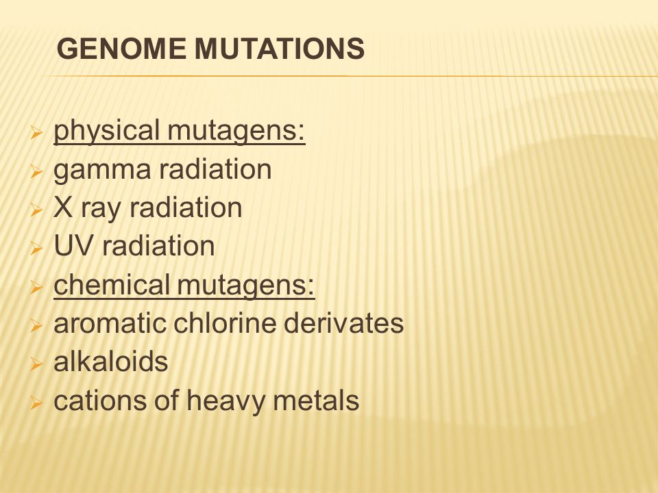  physical mutagens:  gamma radiation  X ray radiation  UV radiation  chemical mutagens:  aromatic chlorine derivates  alkaloids  cations of heavy metals GENOME MUTATIONS