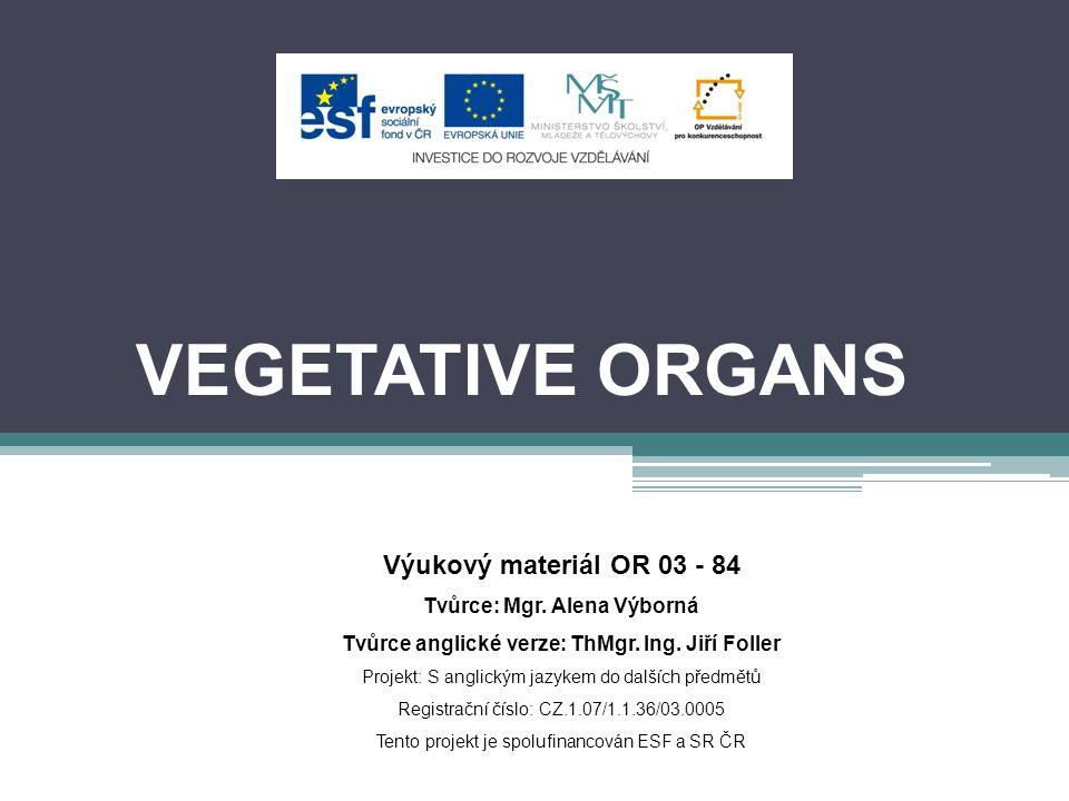 VEGETATIVE ORGANS Výukový materiál OR 03 - 84 Tvůrce: Mgr.