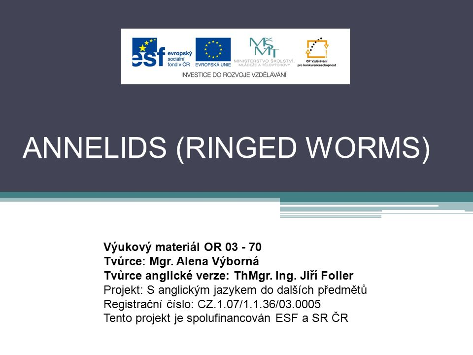 ANNELIDS worm-like shape of the body fresh water, salty water and terrestrial they need moisture body separated into regular links