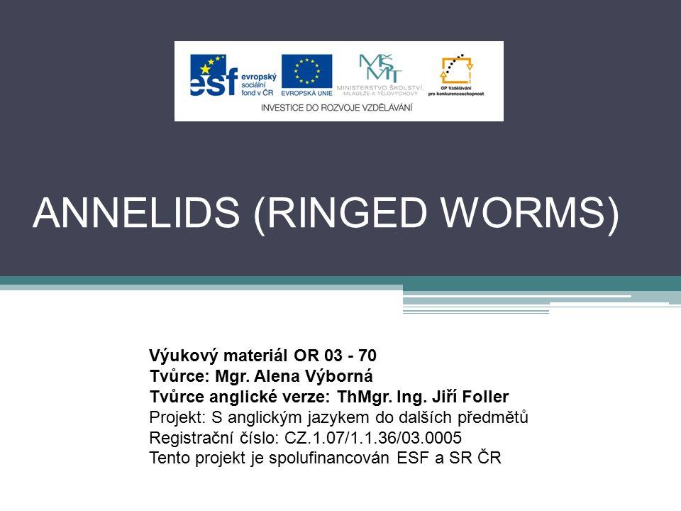 ANNELIDS (RINGED WORMS) Výukový materiál OR 03 - 70 Tvůrce: Mgr. Alena Výborná Tvůrce anglické verze: ThMgr. Ing. Jiří Foller Projekt: S anglickým jaz