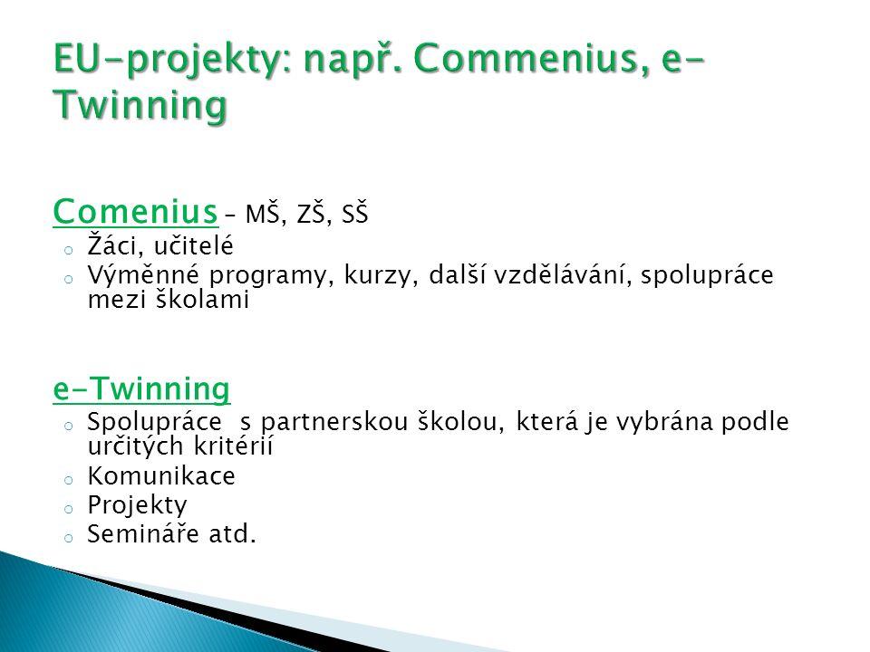 Comenius – MŠ, ZŠ, SŠ o Žáci, učitelé o Výměnné programy, kurzy, další vzdělávání, spolupráce mezi školami e-Twinning o Spolupráce s partnerskou školou, která je vybrána podle určitých kritérií o Komunikace o Projekty o Semináře atd.