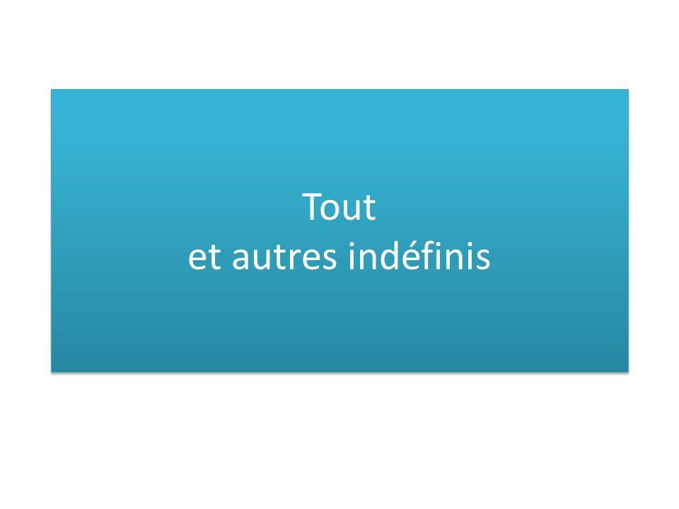 """Tout 1)pronom (samostatné užití) 2)adjectif (spolu s podstatným jménem) 3)adverbe (""""úplně )"""