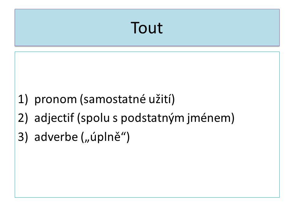 """Tout 1)pronom (samostatné užití) 2)adjectif (spolu s podstatným jménem) 3)adverbe (""""úplně"""")"""