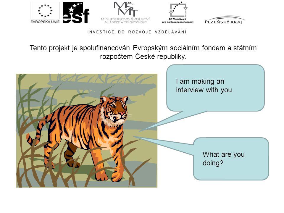Tento projekt je spolufinancován Evropským sociálním fondem a státním rozpočtem České republiky. I am making an interview with you. What are you doing