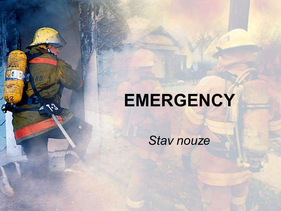 Life-saving equipment Life jacket – záchranná vesta Lifeboat- záchranný člun Lifebelt- záchranný kruh Emergency brake – záchranná brzda First-aid kit- lékárnička Oxygen mask- kyslíková maska Stretcher- nosítka