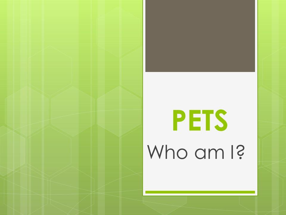 PETS Who am I