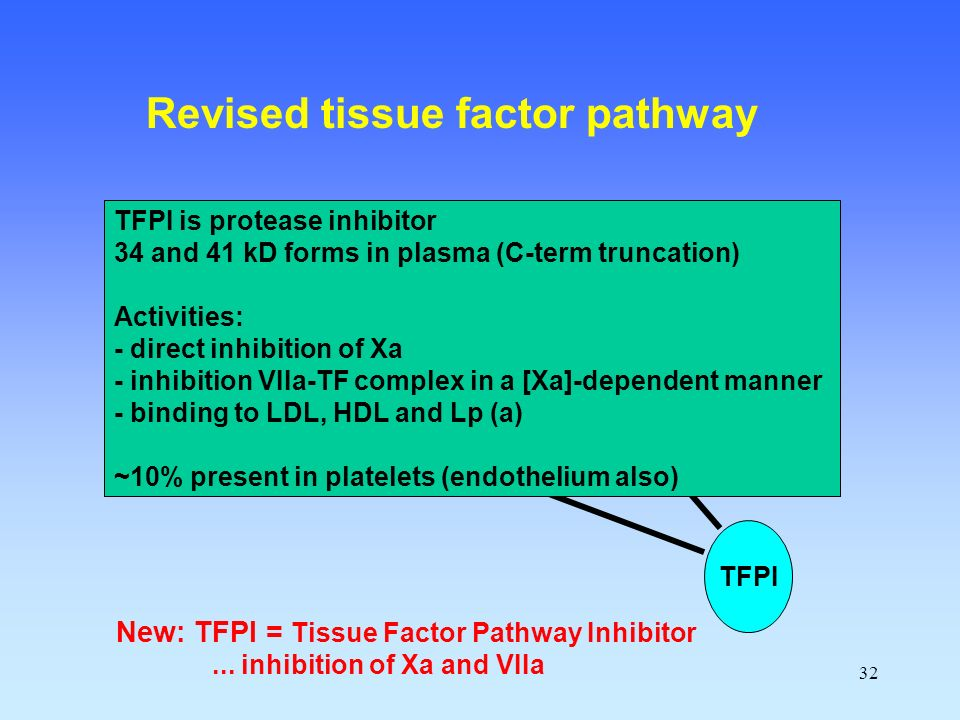 32 Prothrombin (II) Xa VIIa TF IXa New: TFPI = Tissue Factor Pathway Inhibitor...