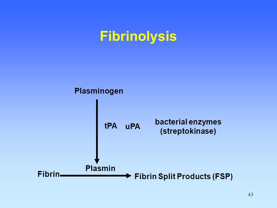 43 Fibrin Fibrin Split Products (FSP) Plasmin Plasminogen tPA Fibrinolysis uPA bacterial enzymes (streptokinase)
