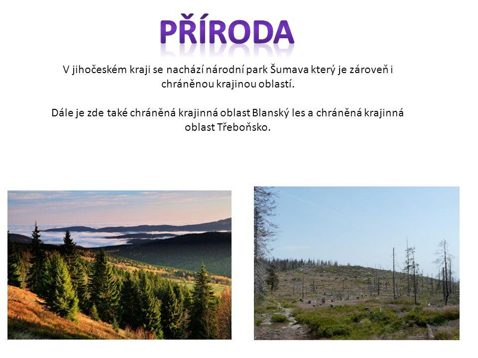 V jihočeském kraji se nachází národní park Šumava který je zároveň i chráněnou krajinou oblastí.