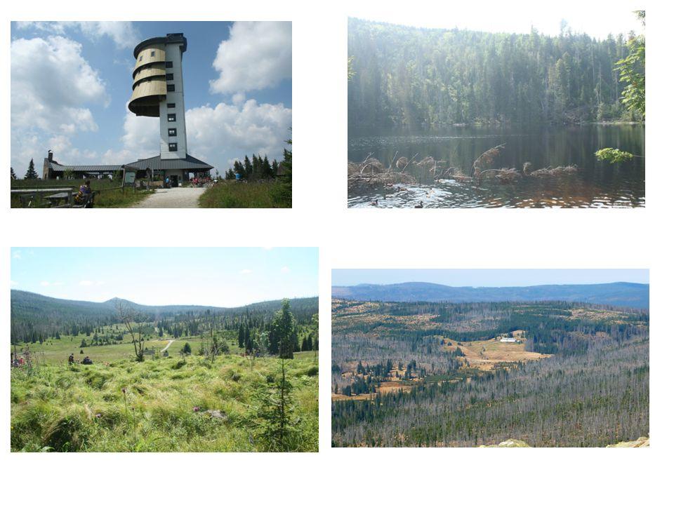 Kleť (1083 m) Bulový (953 m) Buglata (832 m) Vysoká Běta (804 m) Kluk (741 m)
