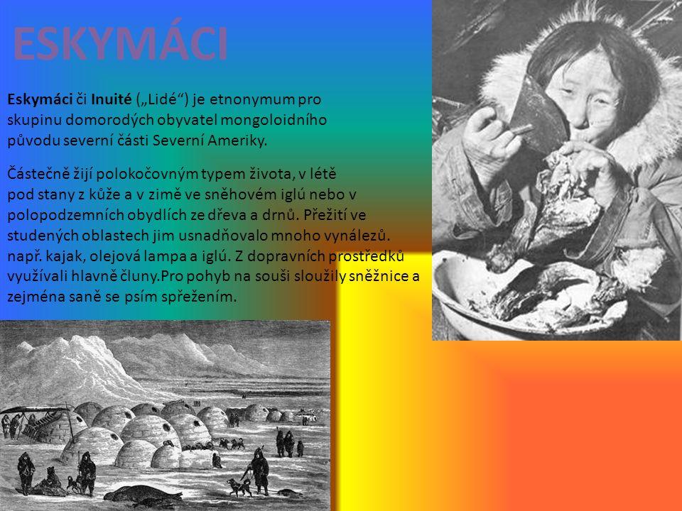 """ESKYMÁCI Eskymáci či Inuité (""""Lidé"""") je etnonymum pro skupinu domorodých obyvatel mongoloidního původu severní části Severní Ameriky. Částečně žijí po"""
