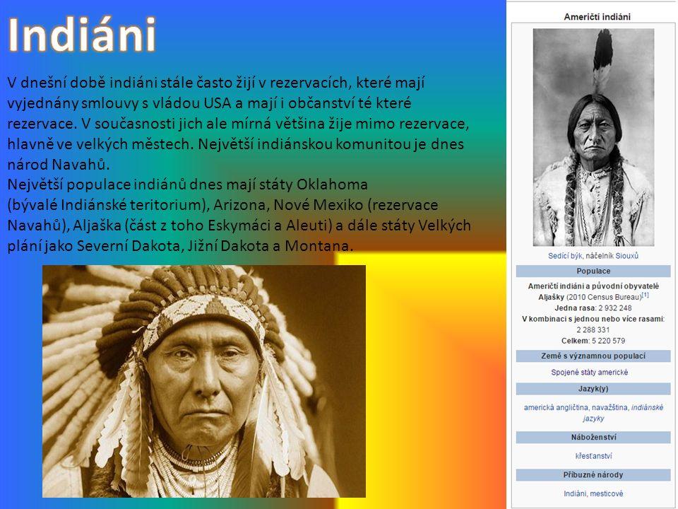 V dnešní době indiáni stále často žijí v rezervacích, které mají vyjednány smlouvy s vládou USA a mají i občanství té které rezervace. V současnosti j