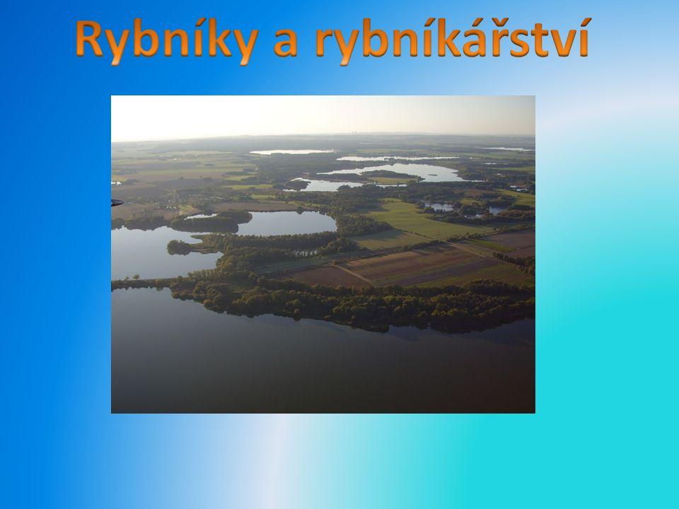 Největší rybník v české republice je rybník Rožmerk(647 ha) na Třeboňsku v jihočeském kraji.