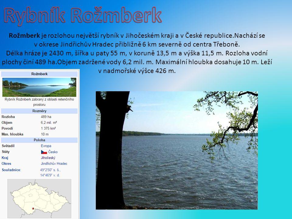 Rožmberk je rozlohou největší rybník v Jihočeském kraji a v České republice.Nachází se v okrese Jindřichův Hradec přibližně 6 km severně od centra Třeboně.