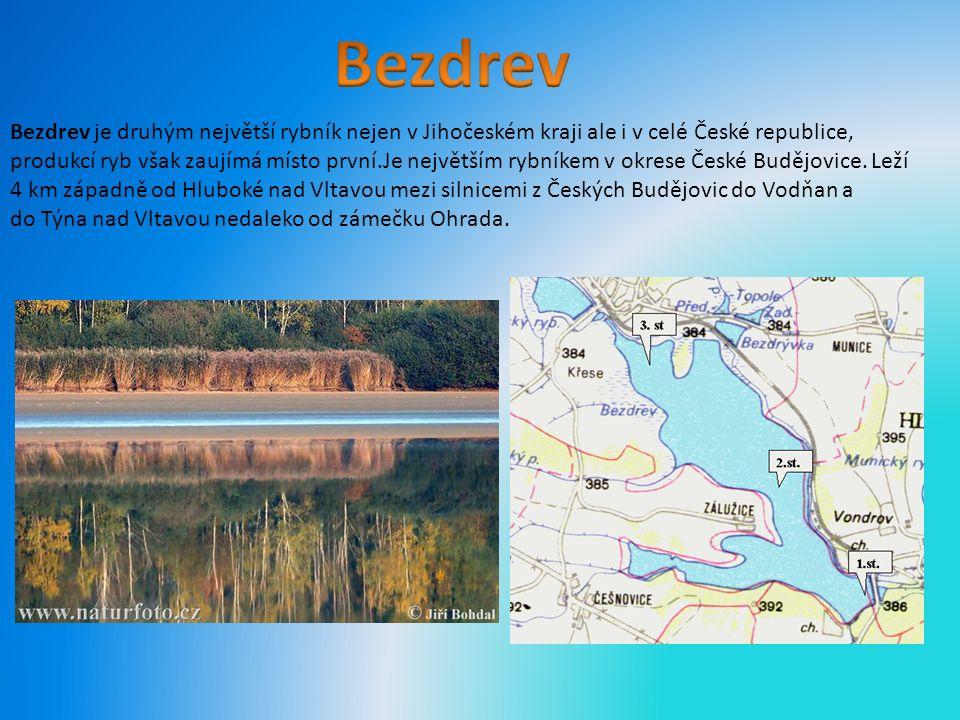 Bezdrev je druhým největší rybník nejen v Jihočeském kraji ale i v celé České republice, produkcí ryb však zaujímá místo první.Je největším rybníkem v okrese České Budějovice.