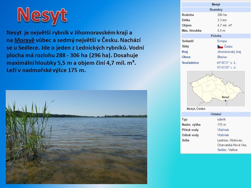 Nesyt je největší rybník v Jihomoravském kraji a na Moravě vůbec a sedmý největší v Česku.
