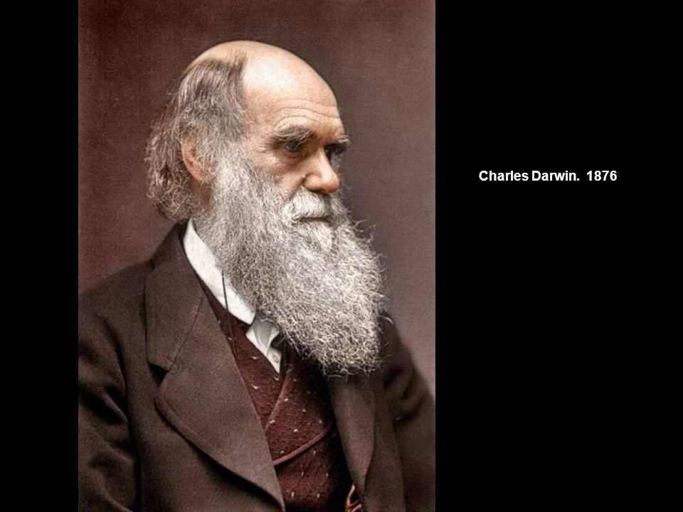 Charles Darwin 1876.