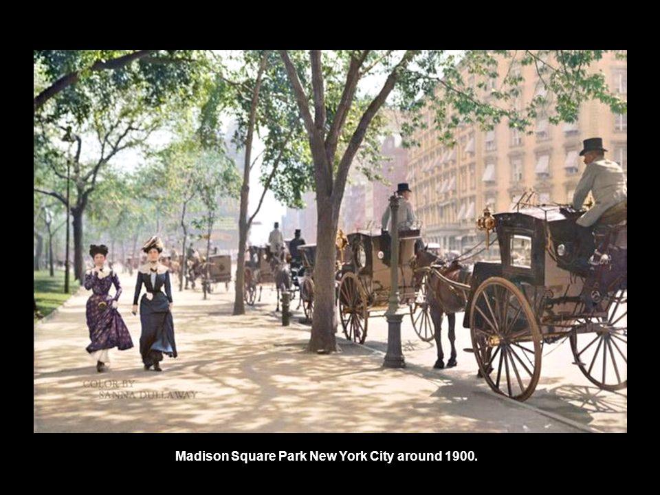 Madison Square Park New York City around 1900.