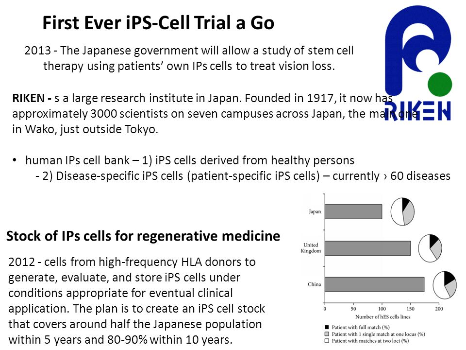 First Ever iPS-Cell Trial a Go 2013 - The Japanese government will allow a study of stem cell therapy using patients' own IPs cells to treat vision lo