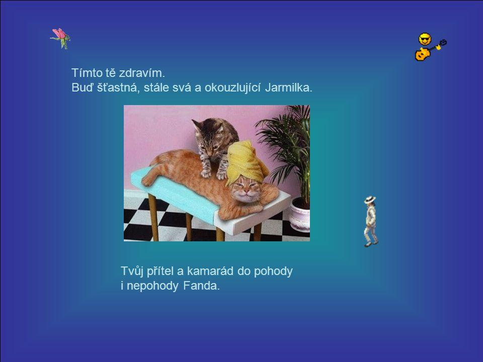 Milá Jarmilko, posílám pozdrav, zasloužíž si mnohem více. Já vím, známe se jen krátce. Přátelství je jako láska a mnohdy pohladí otevřené srdce...