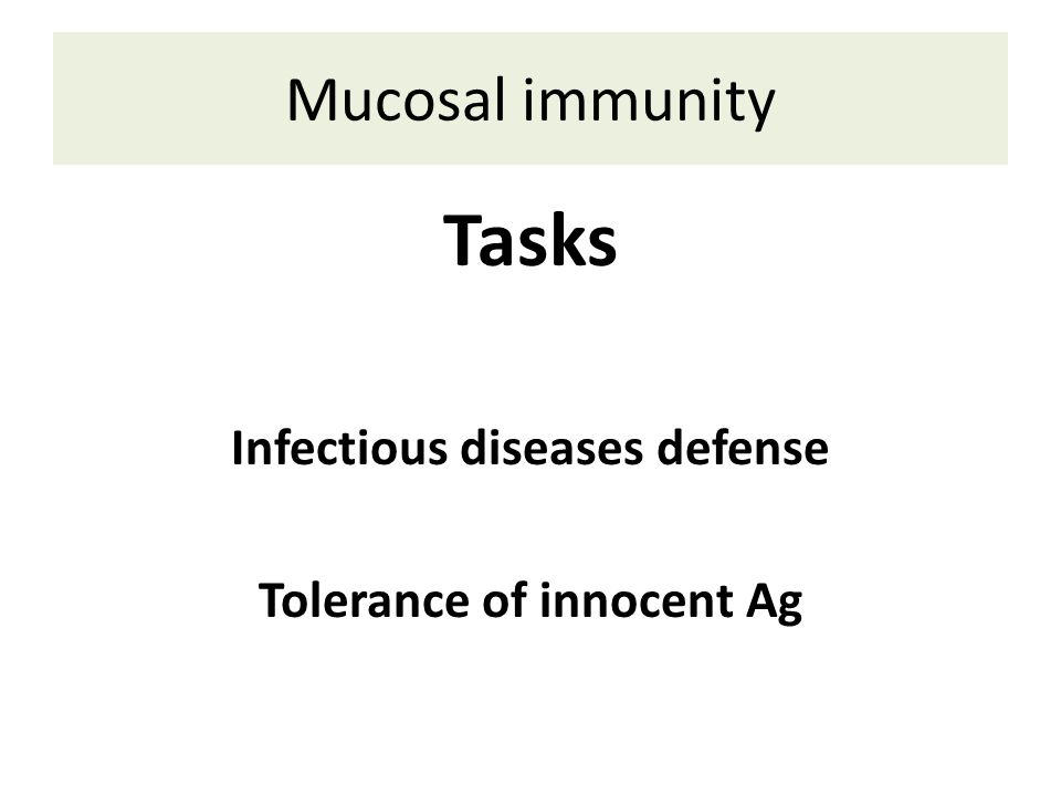 Mucosal immunity Tasks Infectious diseases defense Tolerance of innocent Ag