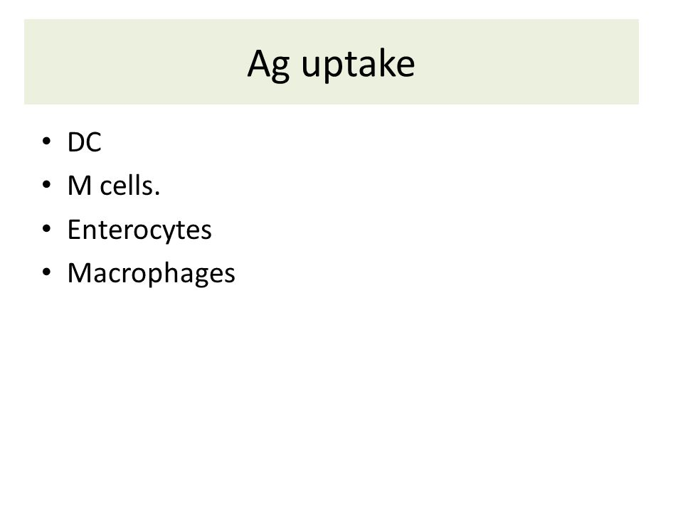 Ag uptake DC M cells. Enterocytes Macrophages