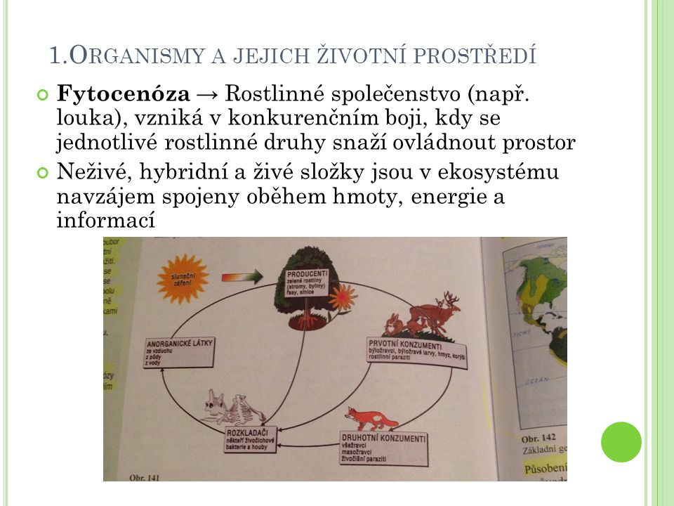 Fytocenóza → Rostlinné společenstvo (např. louka), vzniká v konkurenčním boji, kdy se jednotlivé rostlinné druhy snaží ovládnout prostor Neživé, hybri