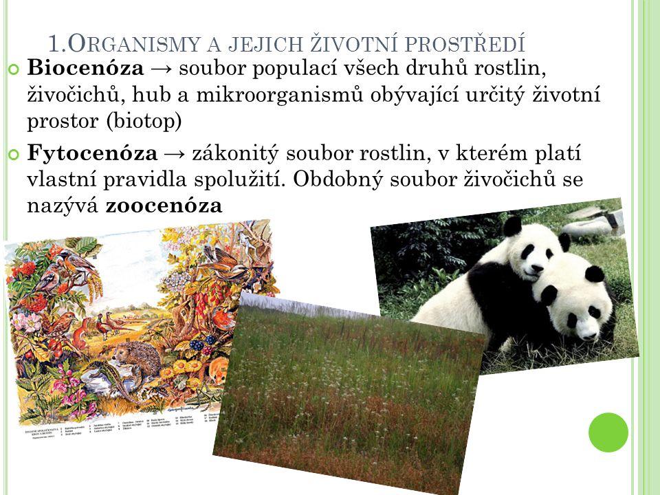 Biocenóza → soubor populací všech druhů rostlin, živočichů, hub a mikroorganismů obývající určitý životní prostor (biotop) Fytocenóza → zákonitý soubor rostlin, v kterém platí vlastní pravidla spolužití.