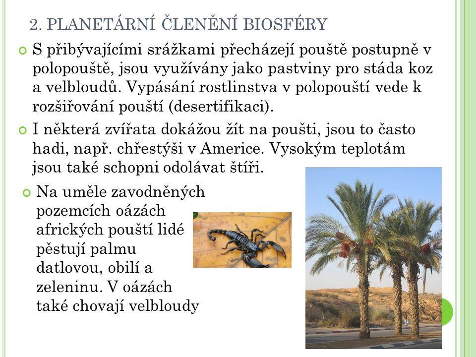 2. PLANETÁRNÍ ČLENĚNÍ BIOSFÉRY S přibývajícími srážkami přecházejí pouště postupně v polopouště, jsou využívány jako pastviny pro stáda koz a velbloud