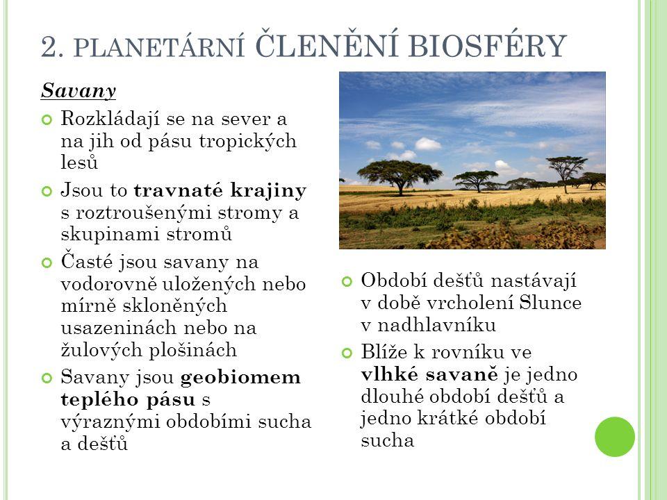 2. PLANETÁRNÍ ČLENĚNÍ BIOSFÉRY Savany Rozkládají se na sever a na jih od pásu tropických lesů Jsou to travnaté krajiny s roztroušenými stromy a skupin