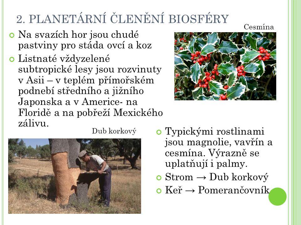 2. PLANETÁRNÍ ČLENĚNÍ BIOSFÉRY Na svazích hor jsou chudé pastviny pro stáda ovcí a koz Listnaté vždyzelené subtropické lesy jsou rozvinuty v Asii – v