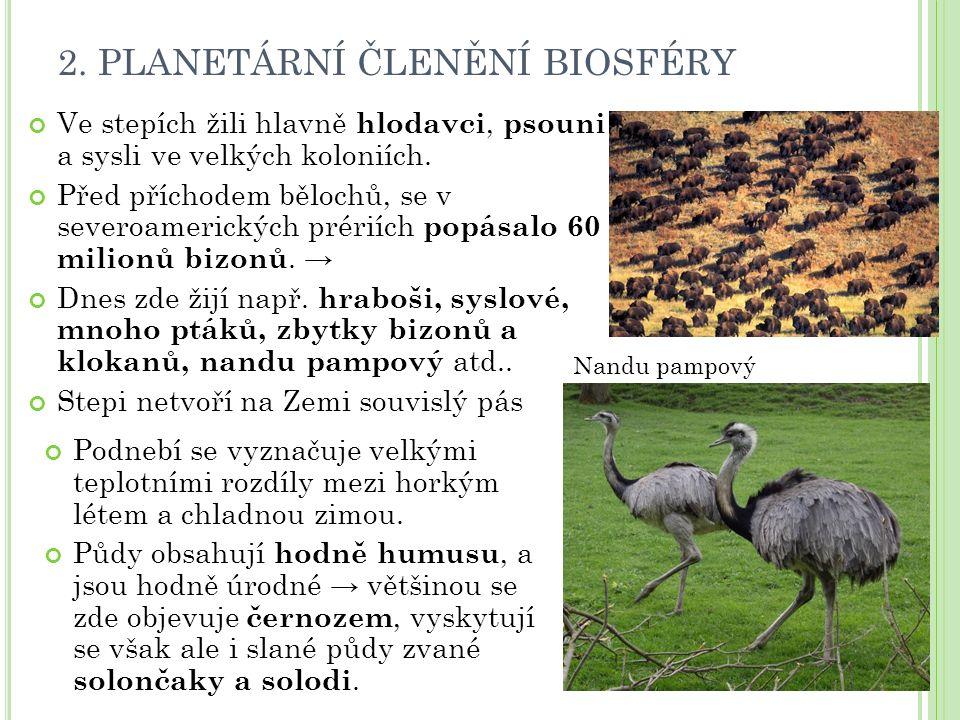 2. PLANETÁRNÍ ČLENĚNÍ BIOSFÉRY Ve stepích žili hlavně hlodavci, psouni a sysli ve velkých koloniích. Před příchodem bělochů, se v severoamerických pré