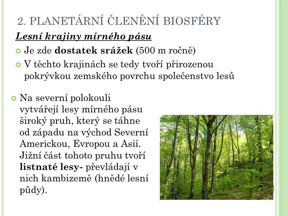 2. PLANETÁRNÍ ČLENĚNÍ BIOSFÉRY Lesní krajiny mírného pásu Je zde dostatek srážek (500 m ročně) V těchto krajinách se tedy tvoří přirozenou pokrývkou z