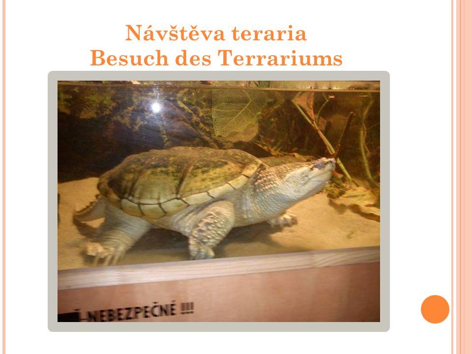 Návštěva teraria Besuch des Terrariums