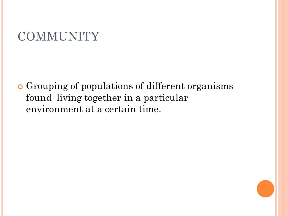 E COLOGY STUDIES : Extending communities The emergence of communities Conditions affecting communities Community productivity