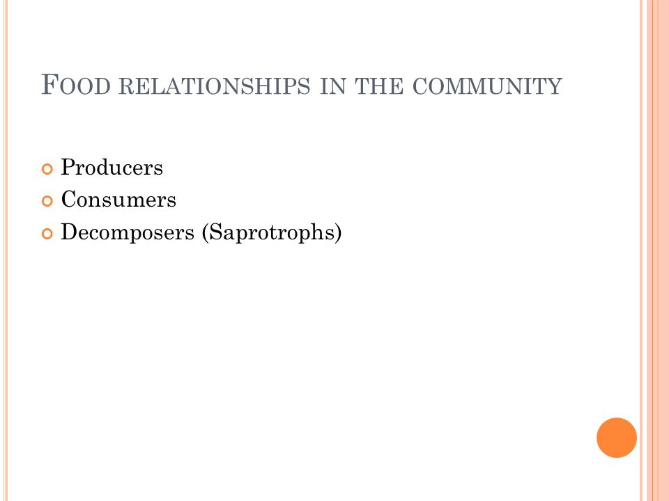 F OOD RELATIONSHIPS IN THE COMMUNITY Producers Consumers Decomposers (Saprotrophs)
