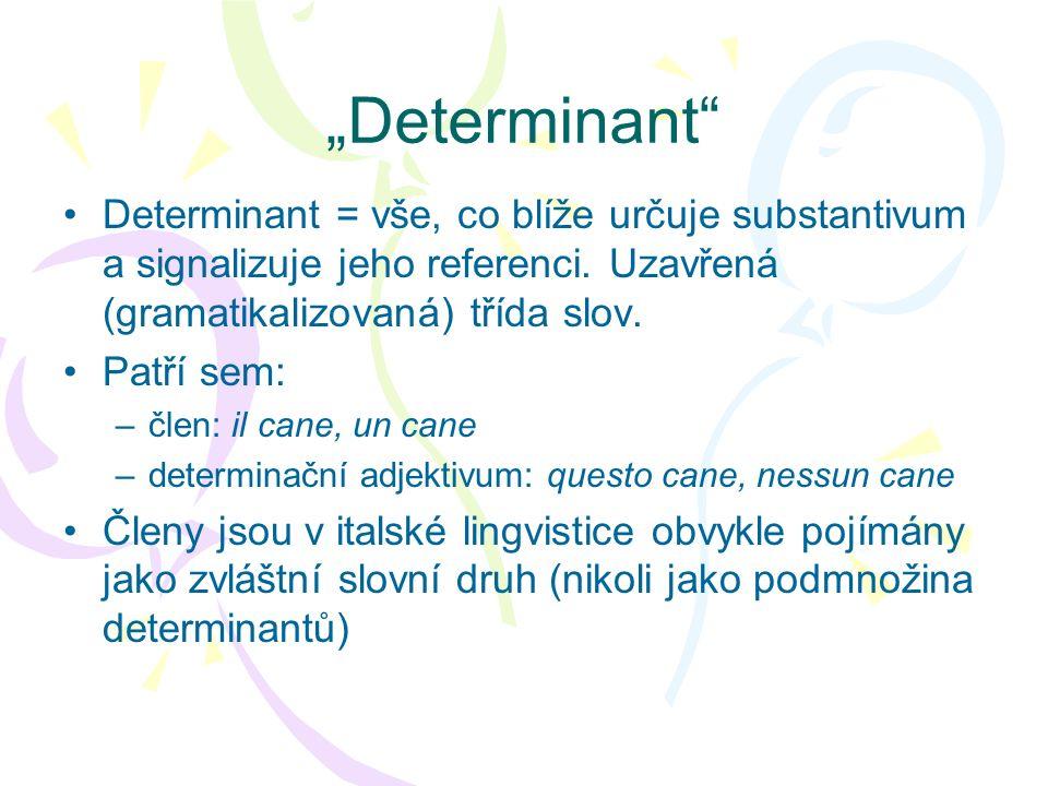 Determinant Determinant = vše, co blíže určuje substantivum a signalizuje jeho referenci. Uzavřená (gramatikalizovaná) třída slov. Patří sem: –člen: i