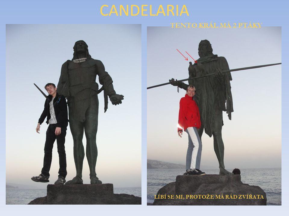CANDELARIA LOS REYES GUANCHES