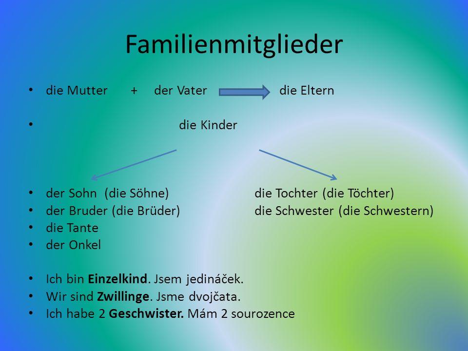 Familienmitglieder die Mutter + der Vater die Eltern die Kinder der Sohn (die Söhne) die Tochter (die Töchter) der Bruder (die Brüder) die Schwester (die Schwestern) die Tante der Onkel Ich bin Einzelkind.