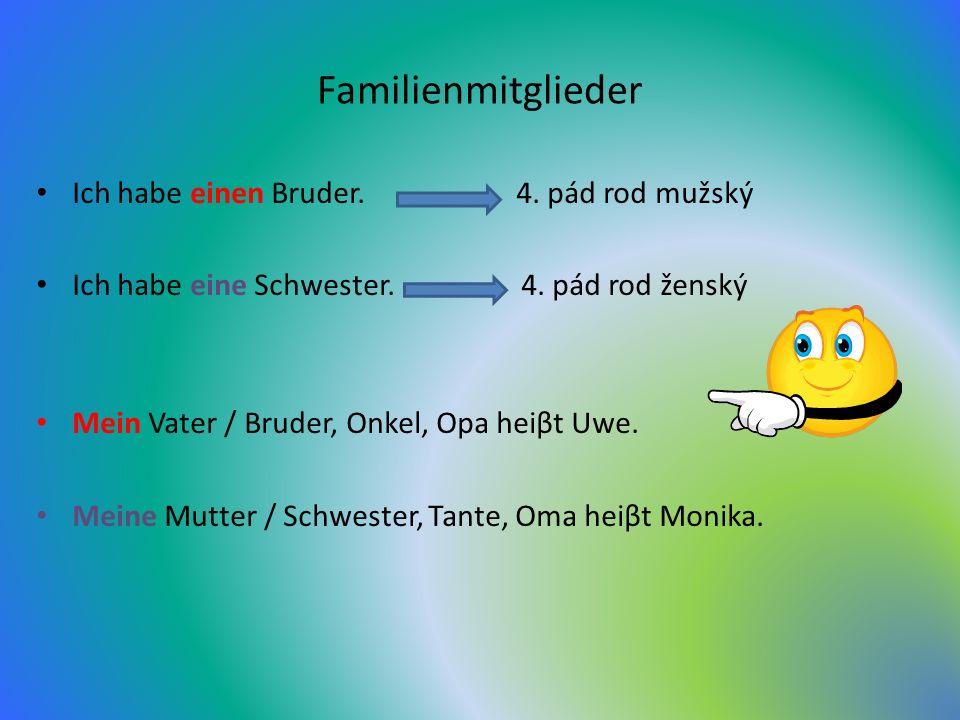 Familienmitglieder Ich habe einen Bruder.4. pád rod mužský Ich habe eine Schwester.