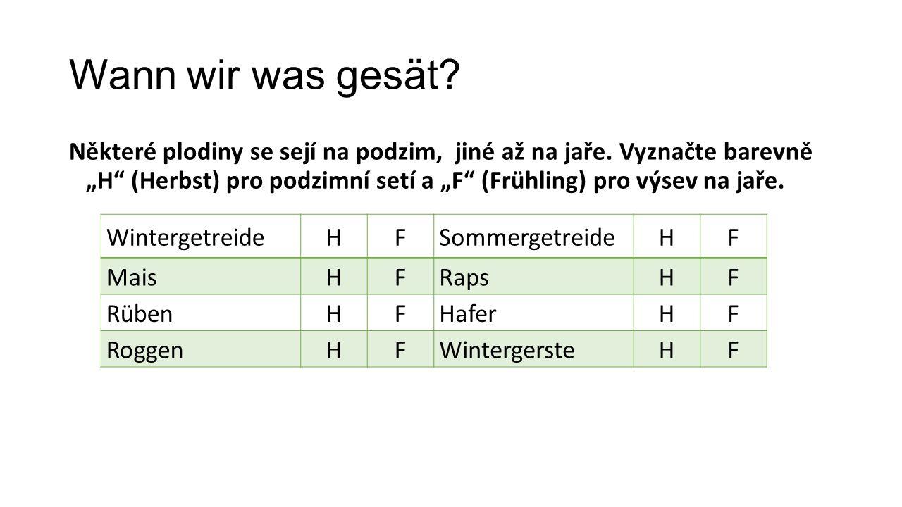 Wann wir was gesät? Některé plodiny se sejí na podzim, jiné až na jaře. Vyznačte barevně H (Herbst) pro podzimní setí a F (Frühling) pro výsev na jaře