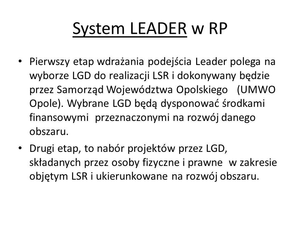 System LEADER w RP Pierwszy etap wdrażania podejścia Leader polega na wyborze LGD do realizacji LSR i dokonywany będzie przez Samorząd Województwa Opo