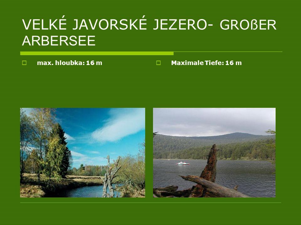 VELKÉ JAVORSKÉ JEZERO- GROßE R ARBERSEE max. hloubka: 16 m Maximale Tiefe: 16 m